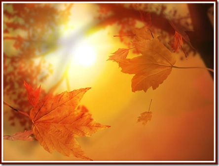 autumn_thumb