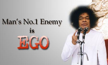 ego-web